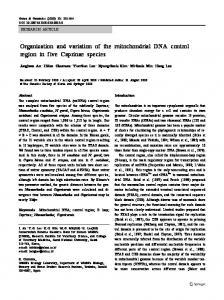 Organization and variation of the mitochondrial DNA control region in ...