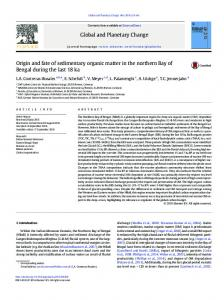 Origin and fate of sedimentary organic matter in the