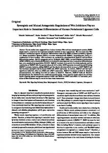 Original Synergistic and Mutual Antagonistic Regulations of ... - J-Stage