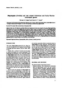 (Orthida) and new related Ordovician and Early Silurian brachiopod ...
