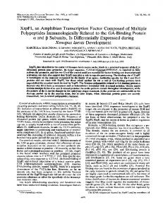 ot and 13 Subunits, Is Differentially Expressed during Xenopus laevis ...