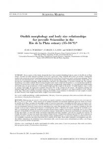 Otolith morphology and body size relationships for ... - Scientia Marina