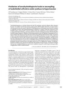 Oxidation of tetrahydrobiopterin leads to ... - Semantic Scholar