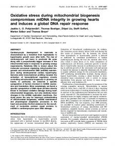 Oxidative stress during mitochondrial biogenesis ... - Oxford Academic