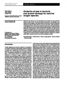 Oxidative stress in bacteria and protein damage by reactive oxygen ...