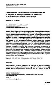 Oxidative Stress Protection and Glutathione ... - Springer Link