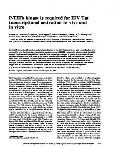 P-TEFb kinase is required for HIV Tat transcriptional activation in vivo ...