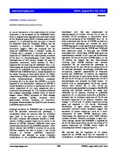 p16INK4a in cellular senescence www.impactaging.com AGING ...