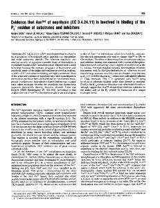 P2' residue of substrates and inhibitors