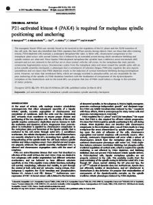 P21-activated kinase 4 (PAK4) is required for metaphase ... - Nature