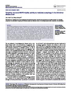 p38α activity to modulate autophagy in
