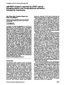 p38 MAP kinase is required for STAT1 serine phosphorylation ... - NCBI
