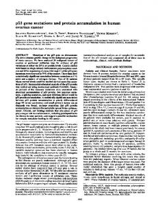 p53 gene mutations and protein accumulation in human ovarian cancer