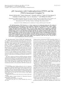 p85 Associates with Unphosphorylated PTEN and the PTEN ...