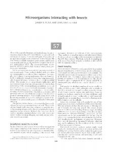 Page 1 Microorganisms Interacting with Insects JAMES R. FUXA AND ...