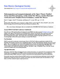 Paleomagnetism and mangetostratigraphy of the Upper Triassic ...