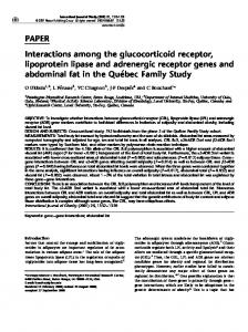 PAPER Interactions among the glucocorticoid receptor ... - Nature