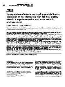 PAPER Up-regulation of muscle uncoupling protein 3 gene ... - Nature