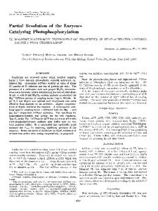 Partial Resolution of the Enzymes Catalyzing Photophosphorylation
