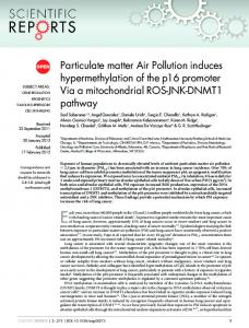 Particulate matter Air Pollution induces ... - Semantic Scholar