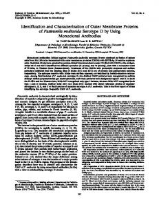 Pasteurella multocida - Journal of Clinical Microbiology - American ...