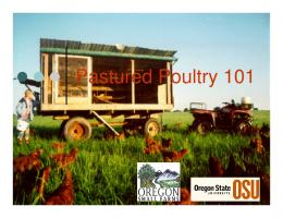 Pastured Poultry 101 - Oregon State University Extension Service