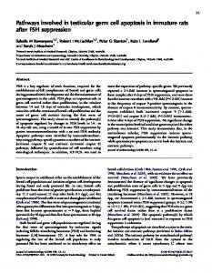 Pathways involved in testicular germ cell apoptosis in immature rats ...