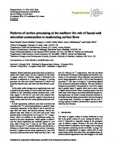 Patterns of carbon processing at the seafloor: the ... - Biogeosciences