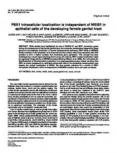 PBX1 intracellular localization is independent of ... - Semantic Scholar