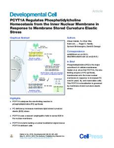 PCYT1A Regulates Phosphatidylcholine Homeostasis ... - Cell Press