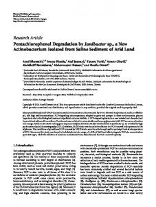 Pentachlorophenol Degradation by Janibacter sp., a New ...