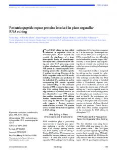 Pentatricopeptide repeat proteins involved in plant