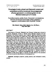 Performance comparison between two forecasting models of ...