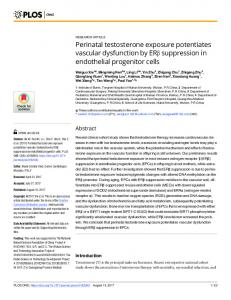 Perinatal testosterone exposure potentiates