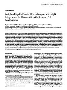 Peripheral Myelin Protein 22 Is in Complex ... - Semantic Scholar