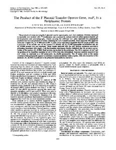 Periplasmic Protein - Journal of Bacteriology - American Society for ...