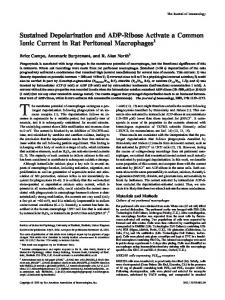 Peritoneal Macrophages Activate a Common Ionic Current in Rat ...