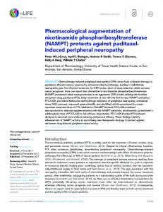 Pharmacological augmentation of nicotinamide