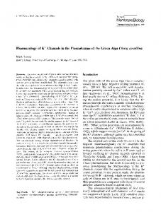 Pharmacology of K +  channels in the