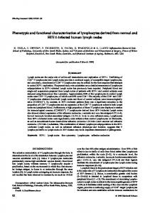 Phenotypic and functional characterization of ... - Wiley Online Library