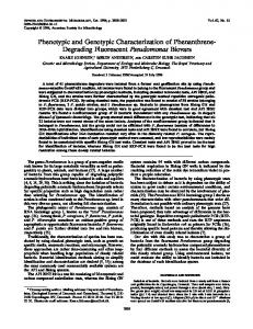 Phenotypic and Genotypic Characterization of Phenanthrene ...
