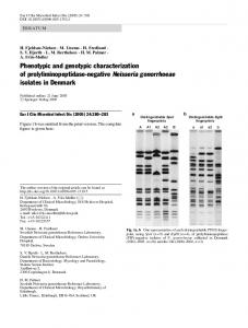 Phenotypic and genotypic characterization of ... - Springer Link