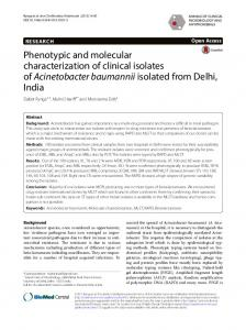 Phenotypic and molecular characterization of clinical isolates of ... - Core