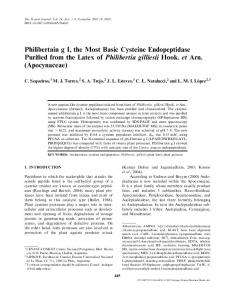 Philibertain g I, the Most Basic Cysteine Endopeptidase Purified from ...