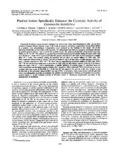 Phorbol Esters Specifically Enhance the Cytolytic Activityof