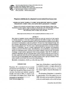 Phosphate solubilization by endophytic bacteria isolated ... - SciELO