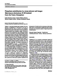 Phosphate solubilization by stress-tolerant soil fungus ...