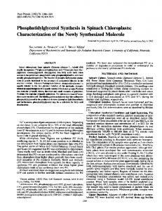 Phosphatidyiglycerol Synthesis in Spinach Chloroplasts - NCBI