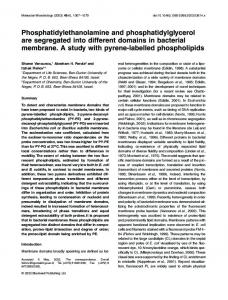 Phosphatidylethanolamine and ... - Wiley Online Library