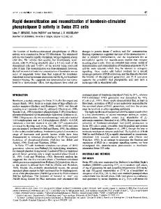 phospholipase D activity in Swiss 3T3 cells